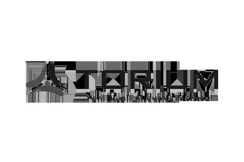 torium-rev